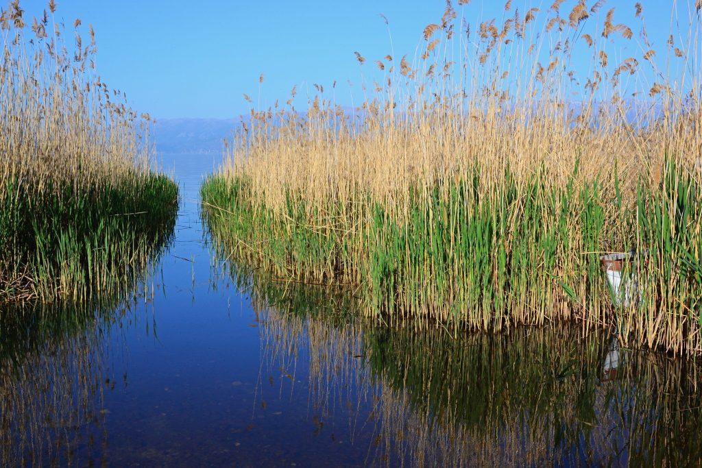 Macedonia Jezioro Prespa
